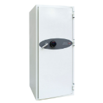 Phoenix Safe Co. DS4622F safe White 228 L Steel