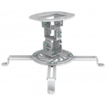 Manhattan 461177 Ceiling White project mount