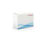 Xerox IBT Cleaner Unit