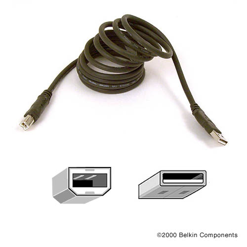 Belkin Pro Series Hi-Speed USB 2.0 Device Cable
