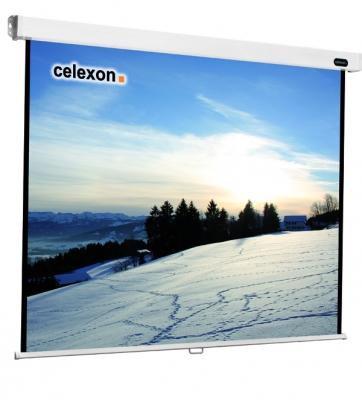 Celexon 1090042 projection screen 1:1