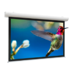 """Projecta Elpro Concept 76"""" 16:9 projection screen"""