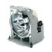Viewsonic RLC-078 projection lamp