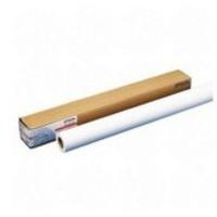 Epson Presentation Matte Paper Roll, 24