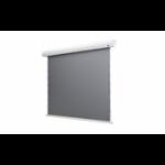 "Celexon HomeCinema - 265cm x 149 cm - 120"" Diag - Dynamic Slate ALR Electric Tensioned High Contrast screen"