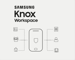 Samsung Knox Workspace 1 Y Microk12