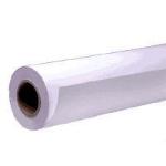 "Epson Presentation Matte Paper Roll, 44"" x 25 m, 172g/m² inkjet paper C13S041220"