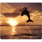 FELLOWES MOUSE PAD OPTICAL RECYCLED DOLPHIN JUMPING