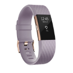 Fitbit Charge 2 Wristband activity tracker Gold, Lavender OLED Wireless