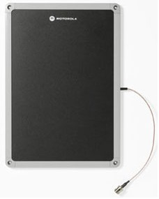 Zebra AN620-SCL71130EU antena para red 4 dBi Clase N