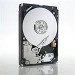 IBM 49Y2078 600GB SAS internal hard drive