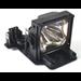 Infocus LP815, LP820 Lamp