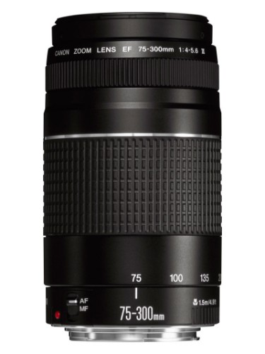 Canon EF 75-300mm f/4.0-5.6 III SLR Telephoto lens Black