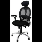 Eliza Tinsley Ergonomic 24 Hour High Back Mesh Chair Black DD
