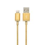 PNY USB A/Lightning 1.2 m 1,2 m Goud, Metallic