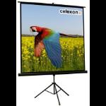 Celexon - Economy - 158cm x 158cm - 1:1 - Tripod Projector Screen