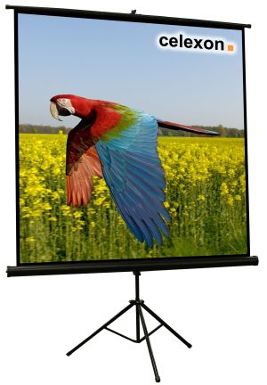 Celexon 1090015 1:1 Black,White projection screen