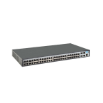 Hewlett Packard Enterprise 1920-48G Managed L3 Gigabit Ethernet (10/100/1000) Grey