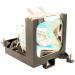 MicroLamp ML10322 projection lamp
