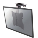 Newstar Soporte de techo para TV/monitor
