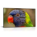 "DynaScan DS751LT4 signage display 190.5 cm (75"") LCD Full HD Digital signage flat panel Black"