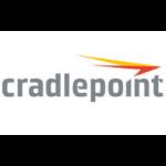 Cradlepoint 1y, Branch LTE