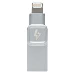 Kingston Technology DataTraveler Bolt Duo USB flash drive 128 GB USB Type-A / Lightning 3.2 Gen 1 (3.1 Gen 1) Silver