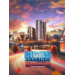 Nexway Cities: Skylines - Content Creator Pack: Univercity City Video game downloadable content (DLC) PC/Mac/Linux Español