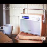 Philips AE5020/12 radio Portable Digital Grey