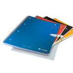 Livescribe A4 sized notebooks with grid rule 4pk. Each single subject notebook has 80 perforated; four-hole pun