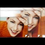 "Epson Premium Glossy 16.5"" x 100' photo paper"