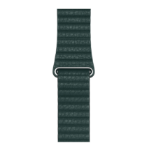 Apple MTH72ZM/A Band Green Leather
