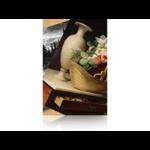 """Epson Premium Luster Photo Paper, 60"""" x 30,5 m, 260g/m²"""