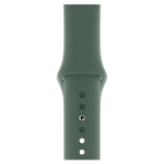 Apple MWUR2ZM/A accesorio de relojes inteligentes Grupo de rock Verde Fluoroelastómero