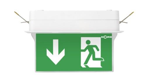 SiCurio ExitEasy-R emergency lamp Green,White