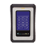 DataLocker DL512SSDV3 512GB Black,Grey external solid state drive