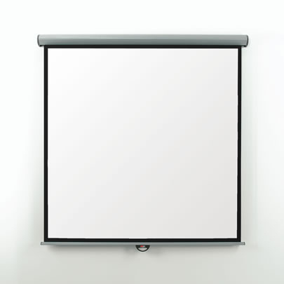 Metroplan EES30W 1:1 Black,White projection screen