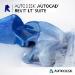 Autodesk AutoCAD Revit LT Suite 2020 1 licencia(s) Electronic License Delivery (ELD) Plurilingüe