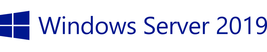 Hewlett Packard Enterprise Microsoft Windows Server 2019 1 license(s) License Multilingual