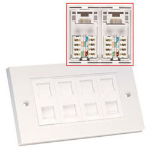Lindy CAT6 Double Wall Plate White