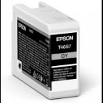 Epson UltraChrome Pro Original Grey 1 pc(s)