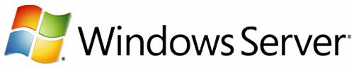 Microsoft Windows Server CAL, OLV-GOV, LIC/SA, 1u CAL, 1Y Aq Y1