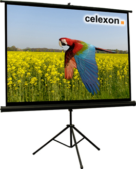 Celexon 1090019 4:3 Black,White projection screen