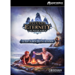Paradox Interactive Pillars of Eternity - White March Expansion Pass Linux/Mac/PC