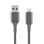 Belkin Smart LED Lighting to USB-A Gray
