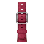 Apple 42mm Berry Classic Buckle