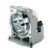 Viewsonic RLC-053 260W projection lamp