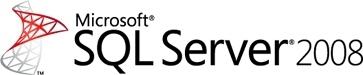 Microsoft SQL Server 2008 Standard, 1Y, CAL