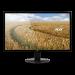 "Acer CONSUMER 21.5"" 16:9,TN,1920x1080,5ms,60Hz,16.7M,200nits,VGAx1,DVIx1,HDMIx1,Tilt,VESA 100x100,3YR WTY"