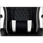 AEROCOOL ThunderX3 TGC31 Series Gaming Chair - Black white